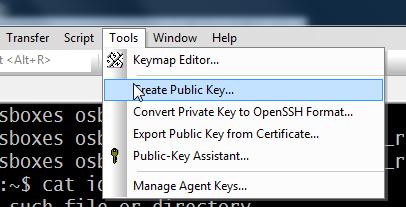 создаем открытый ключ