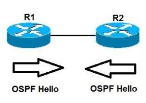 ospf single area topology