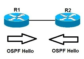 ospf single area topology